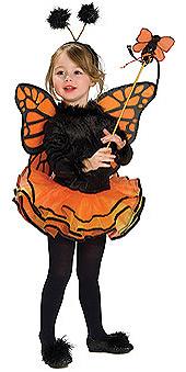 Butterfly Deluxe Orange