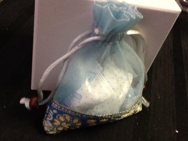 Favor Blue Orgenza Bag  With Trim