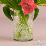 Decor Gel Water Beads Clear 37g