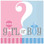 Baby Shower Boy or Girl Napkins