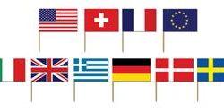 A International Flags Picks 50 ct