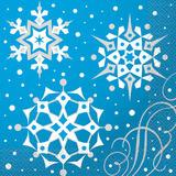 chris ln snowflakes 57992uni 2.29
