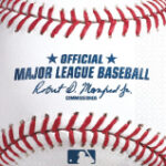 theme sports baseball bn rawllings 501097